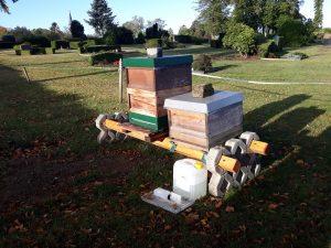 Bienenstöcke auf Ketzberger Friedhof